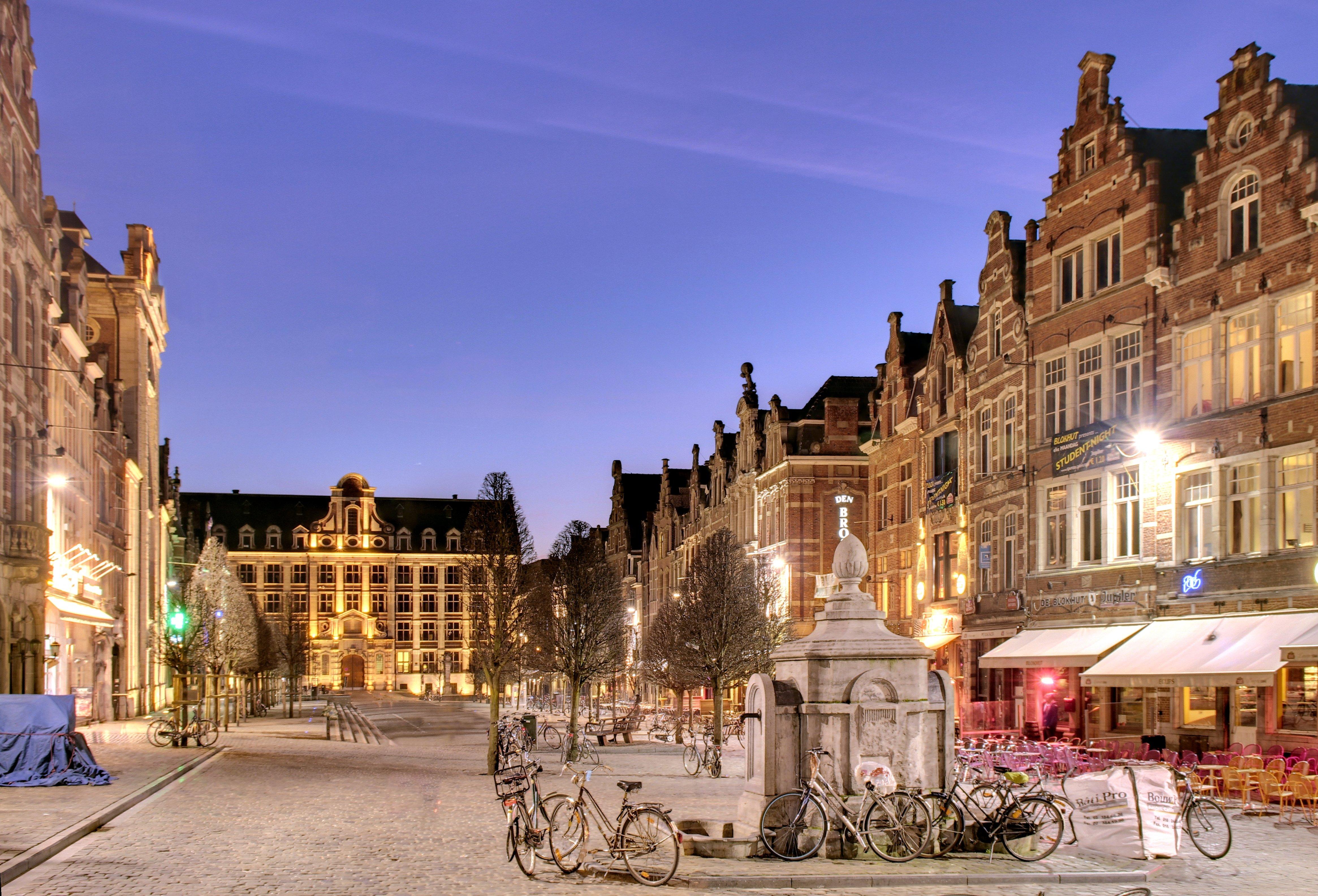 Old_market_Leuven_-_panoramio[1]